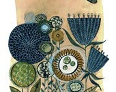 a meadow - 11X14 GICLEE PRINT, botanical collage, Susan Black