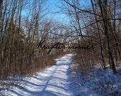 Photo Print 4 x 6 Snowy Path Through Woods