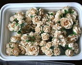 70 Beautiful shabby chic CREAM colored mulberry paper flowers and roses plus reusable plastic case
