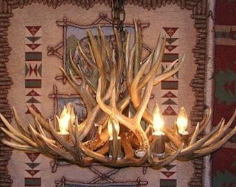 34 inch Wide Mule Deer Antler Chandelier, 19 inch tall, Center Down Light