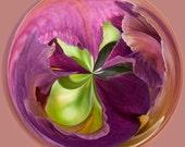 Pink Mauve Purple Green  8x8 Altered Fine Art Photograph