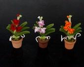 3 Pots - Dollhouse Miniature Handmade Clay Rhynchostylis Gigantea Orchid Flower Flora