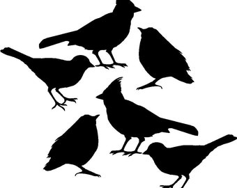 Bird Decals set of Six, vinyl wall decals stickers for DIy craft projects and home decor