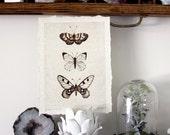 Flight Series A - Nature Collection Art Print Butterfly Bird Leaf
