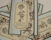 Vintage Hydrangea - set of 6 thank you notes in brown, pale blue and cream