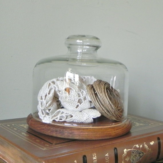 SALE Vintage glass dome with wooden base to display your treasures