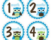 12 Monthly Baby Milestone Waterproof Glossy Stickers - Just Born - Newborn - Weekly stickers available - Design M031-05