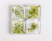 Lush Green Fern Collection, Glass and Resin Fine Art Magnets, Set of Four - Stocking Stuffer, Hostess Gift, Souvenir - junehunter