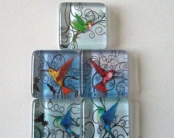 Pretty Hummingbird Square Glass Magnets Set of 5