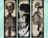 SKULLS AND SKELETONS Digital Collage Sheet 1x3in Microscope Slide Halloween Spooky - no. 0026