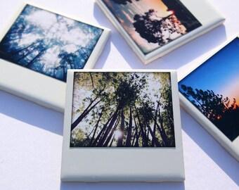 Tree Drink Coasters - Set of 4 Ceramic Coasters