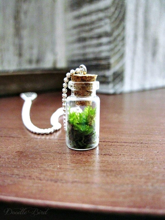 Terrarium Necklace with Sterling Silver Chain