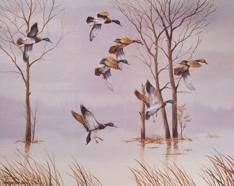 Original Art Print- Demumbers Bay Mallards Print