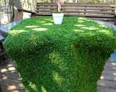 Moss table runner-Moss mats-Preserved Moss sheets-Decorative Moss Sheets-Table Runners-Green Moss - Moss Mat