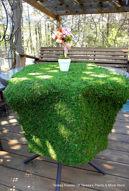 Moss Mats Moss Table Runner Moss Mats Preserved Moss Sheets Decorative