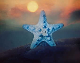 Starfish Sunset - 8x8 Fine Art Print - Nautical Decor - Starfish - Sunset - Beach Decor