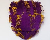 1 Purple on Gold Curled Goose Feather Pad