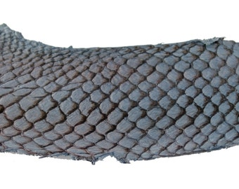 Blue GREY Exotic Glossy Eco Friendly, CHROME free, real Tilapia Fish Leather Skin from Go Fish Leather. Sold by each skin.
