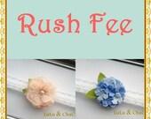 RUSH FEE- UPGRADE