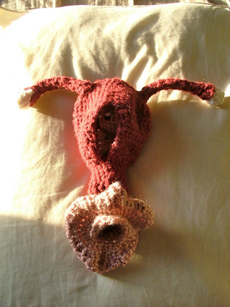 Fetus Uterus And Vagina Crochet Plush With By