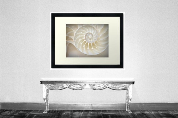 Ocean Dreaming - Nautilus Shell Sea Shell Ocean is calling Beach bum Beach house decoration Original Fine Art Print 8x10