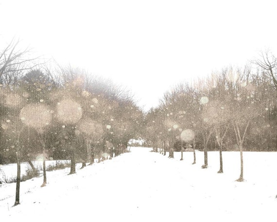 https://www.etsy.com/listing/118883664/snowy-road-trees-snowflakes-white-winter