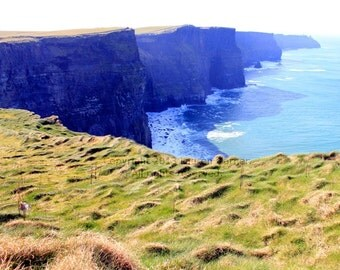 Cliffs of Moher - Ireland County Clare Doolin Europe Travel Photography Ocean Sea Blue Green Yellow Field - 8x10 Photograph