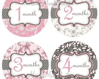 FREE GIFT, Baby Girl Monthly Stickers, Baby Month Stickers, Pink, Grey, Floral Newborn Baby Milestone Stickers, Just Born Bodysuit Stickers