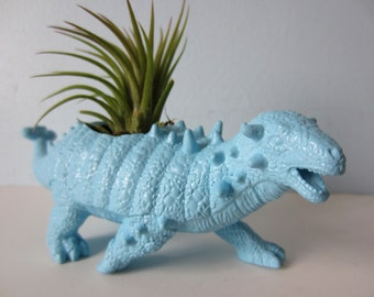 Upcycled Dinosaur Planter - Blue Ankylosaurus with Air Plant