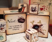 Set of 6 1 inch and 2.5inch Nest wooden blocks. Perfect for spring decor