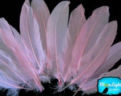 Pink Goose Feathers, 1 Pack - BABY PINK Goose Satinettes Loose Feathers 0.3 oz. : 168