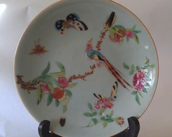 Antique Chinese early 19th century wucai celadon garden scene hand painted enamel porcelain plate signed