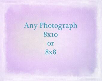 Any Photograph Printed 8x10 or 8x8, The Strange Bird, Seaweed Prints