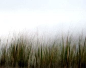 Grass, Green and Brown, Abstract Nature Photography, Earth Tones, 8X10 Mat, Ready to Frame, Fine Art Photography, Wall Art