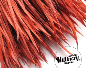 Burnt Orange Goose Biot Feather Fringe, 5 Inch Piece (30 or More Feathers) for Millinery and Craft