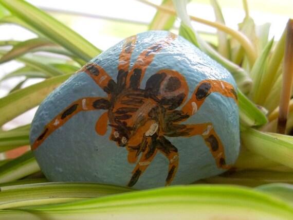 Wolf Spider rock art