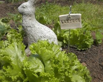 Lettuce Plant Marker