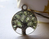 Glass Peridot Necklace, Tree of Life, Magnifying Necklace, August Birthstone Color, Peridot Tree Necklace