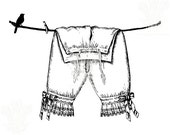 Transparent Background PNG Instant Download Pantaloons French Laundry Label Tattered Vintage 409PNG