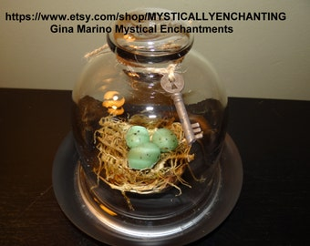 Small Glass CLoche with Bird nest, moss, eggs and skeleton key