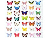 ONE handmade dupioni silk butterfly hair clip . the butterfly house . your choice
