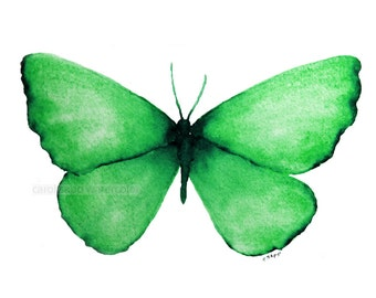 "emerald green butterfly archival 5"" x 7"" print of watercolor painting"