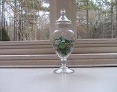 Vintage Pedestal Apothecary Jar - Valentine - Terrarium - Pedestal -- Canister
