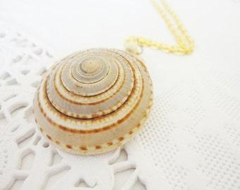 genuine seashell pendant chain necklace vintage jewelry