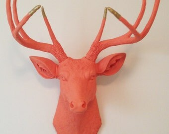 Coral with Gold Antler Tips Deer Head Wall Mount