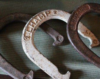 Three Horseshoes by Royal and Champs Set of three