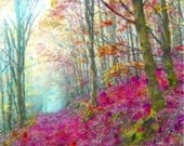 Watercolor Painting, Watercolor Print, Art Print, 8x10 Print, Giclee Print, Enchanted Forest, Pink Art, Woods, Forest, Tree Painting