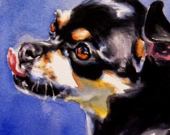 Chihuahua painting watercolor dog art original pet portrait OOAK toy puppy face