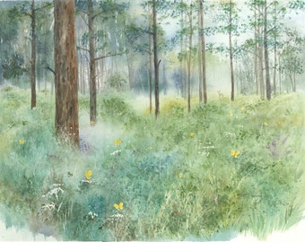 Print open edition 8 by 10 Florida woods scenic bowman Dunnellon Meadow