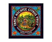 Small Journal - Fancy Citrus Fruit  - Fruit Crate Art Print Cover
